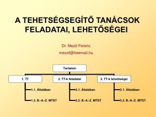 A TEHETSÉGSEGÍTŐ TANÁCSOK  FELADATAI, LEHETŐSÉGEI