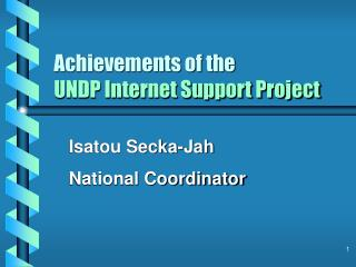 Achievements of the UNDP Internet Support Project
