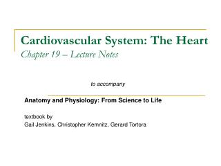 Cardiovascular System: The Heart Chapter 19 – Lecture Notes