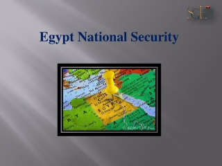 Egyptian Youth and Their Role in Achieving Good Governance