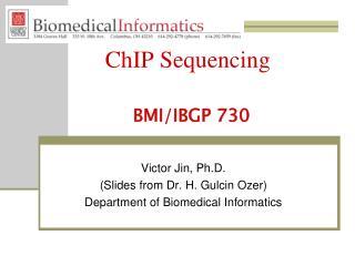 ChIP Sequencing BMI/IBGP 730