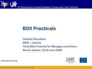 BDII Practicals