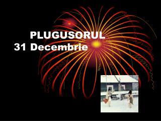 PLUGUSORUL  31 Decembrie