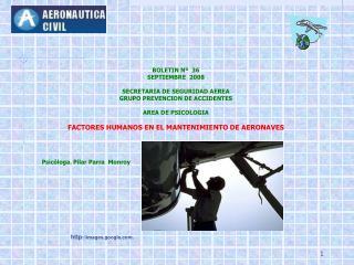 BOLETIN Nº  3 6 SEPTIEMBRE   2008 SECRETARIA DE SEGURIDAD AEREA GRUPO PREVENCION DE ACCIDENTES