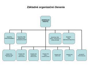 Základné organizačné členenie