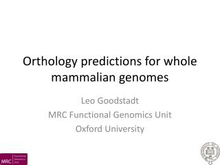 Orthology predictions for whole mammalian genomes
