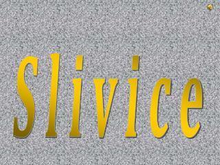 Slivice