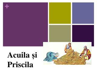 Acuila și Priscila