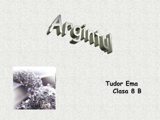 Tudor Ema                                     Clasa 8 B