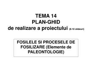 TEMA 14 PLAN-GHID de realizare a proiectului  (8-10 slideuri)