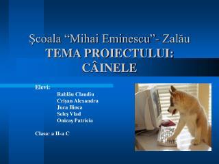 """Şcoala """"Mihai Eminescu""""- Zalău TEMA PROIECTULUI: CÂINELE"""