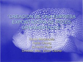 """""""CREACION DE UNA EMPRESA EXPORTADORA DE PECES ORNAMENTALES"""""""