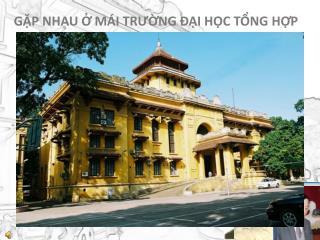 Trương Bá Hoành Phùng Đình Học  Bùi Thị Hồng  Nguyễn Công Hợp  Hoàng Xuân Huấn  Đan Mạnh Hùng