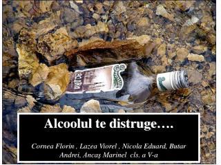 Alcoolul te distruge ….