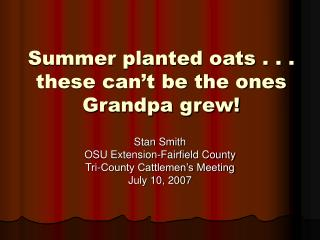 Summer planted oats . . . these can't be the ones Grandpa grew!