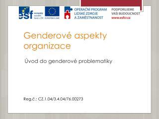 Genderové aspekty organizace