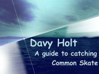 Davy Holt