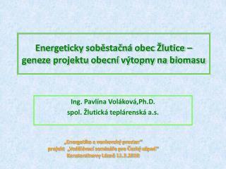 Energeticky soběstačná obec Žlutice – geneze projektu obecní výtopny na biomasu