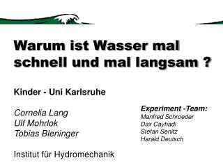 Experiment -Team: Manfred Schroeder Dax Cayhadi Stefan Senitz Harald Deutsch