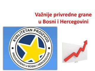 Važnije privredne grane  u Bosni i Hercegovini
