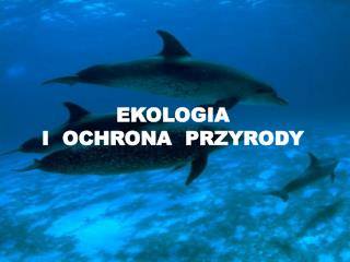EKOLOGIA I  OCHRONA  PRZYRODY