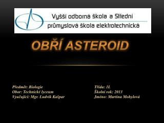 Obří asteroid