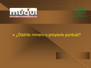 ¿Distrito minero o proyecto puntual?