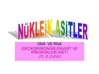 DNA  VE RNA (DEOKSİRİBONÜKLEİKASİT VE RİBONÜKLEİK ASİT)  PC  KOPAT