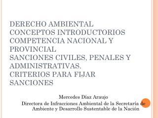 Mercedes Díaz Araujo