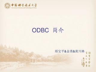 ODBC   简介