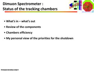 Dimuon Spectrometer : Status of the tracking chambers