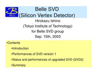 Belle SVD                          (Silicon Vertex Detector)