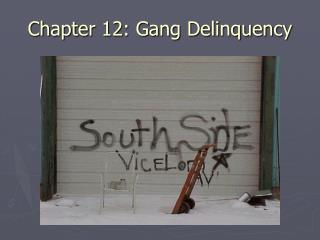 Chapter 12: Gang Delinquency