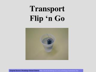 Transport Flip 'n Go