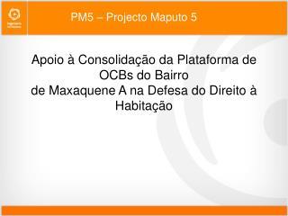 PM5 � Projecto Maputo 5