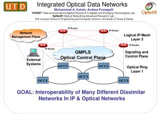 Integrated Optical Data Networks