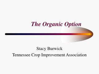 The Organic Option