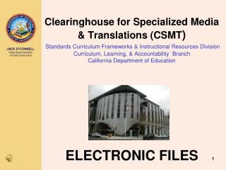 ELECTRONIC FILES