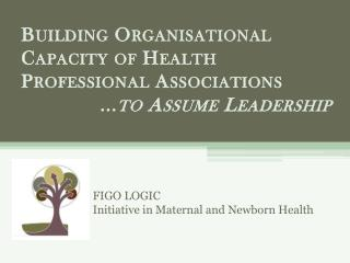 FIGO LOGIC  Initiative in Maternal and Newborn Health