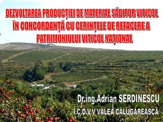 Drg.Adrian SERDINESCU