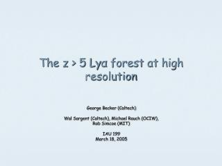 The z > 5 Ly α  forest at high resolution