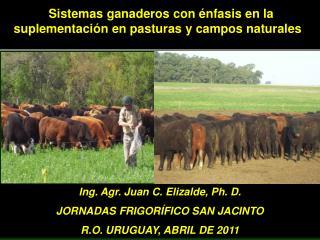 Sistemas ganaderos con énfasis en la suplementación en pasturas y campos naturales