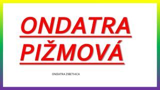 ONDATRA PI�MOV�
