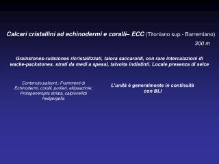Calcari cristallini ad echinodermi e coralli– ECC (Titoniano sup.- Barremiano)
