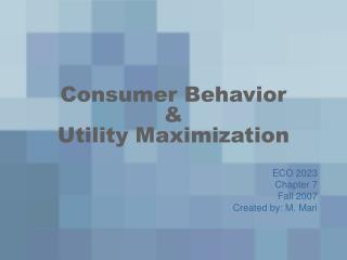 Consumer Behavior    Utility Maximization