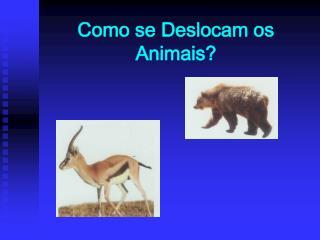 Como se Deslocam os Animais?