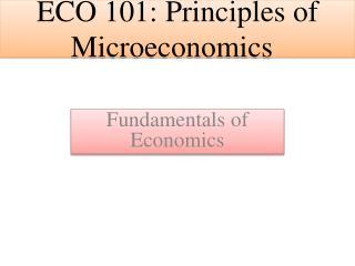 ECO 101: Principles  of Microeconomics