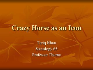 Crazy Horse as an Icon