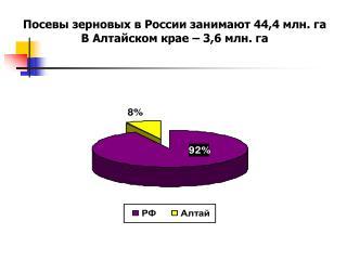 Посевы зерновых в России занимают 44,4 млн. га В Алтайском крае – 3,6 млн. га
