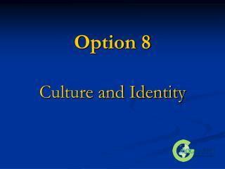 Option 8